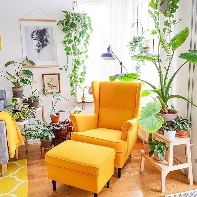 corner room, wooden floor, white wall, yellow chair, yellow ottoman, wooden yellow plants