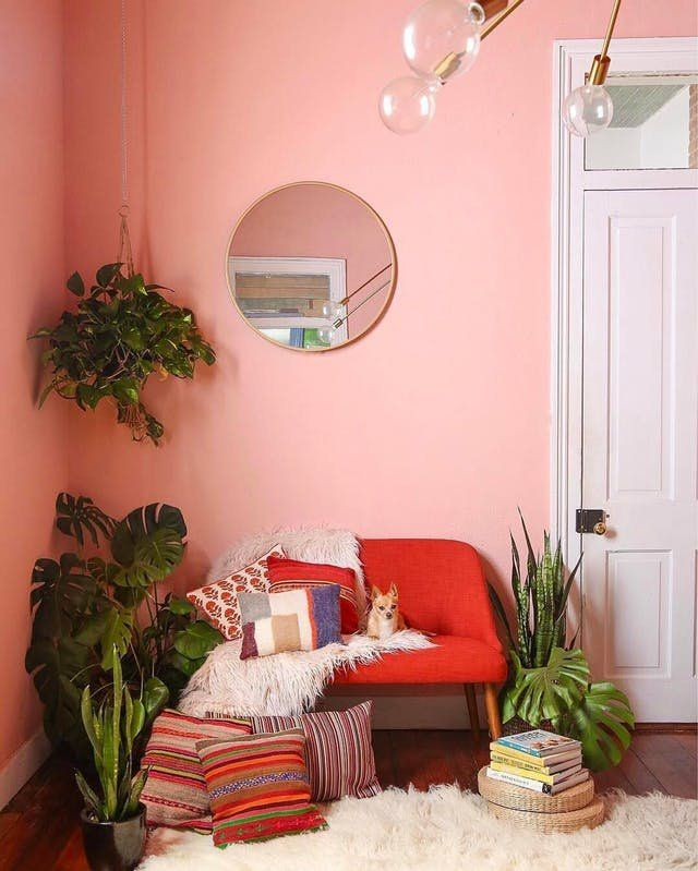living room, pink wall, red chair, plants, glass bulb chandelier, wooden floor, white rug, round mirror