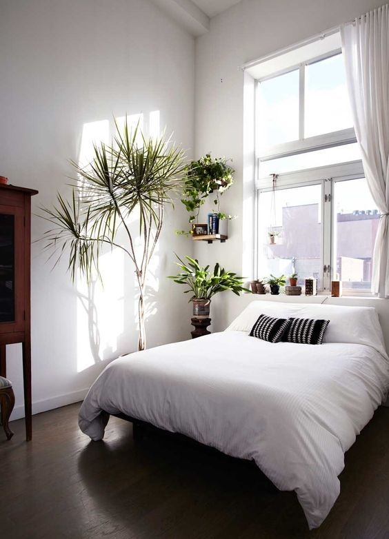 bedroom, wooden floor, white wall, white bedding, white curtain, plants on floating shelves