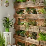 Wooden Plant Shelves With Crate