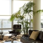 Black Leather Eames Lounge Chair