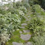 Design Footpath Made By Stone Greenery Plants Wall White Green Plant Pathway From Stones Exterior