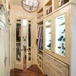 Traditional Rustic Walk In Closet Organizer Including Glass Door Shoes Shelves Hanging Sections Upper Open Shelves Dark Wood Flooring Idea