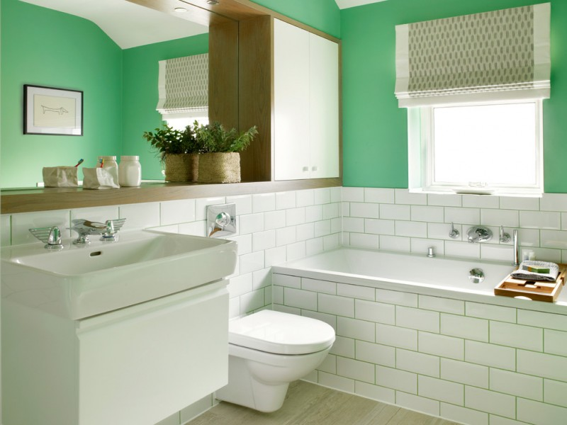 dressing room wall cabinet big mirror window toilet green walls faucets transitional room bathtub