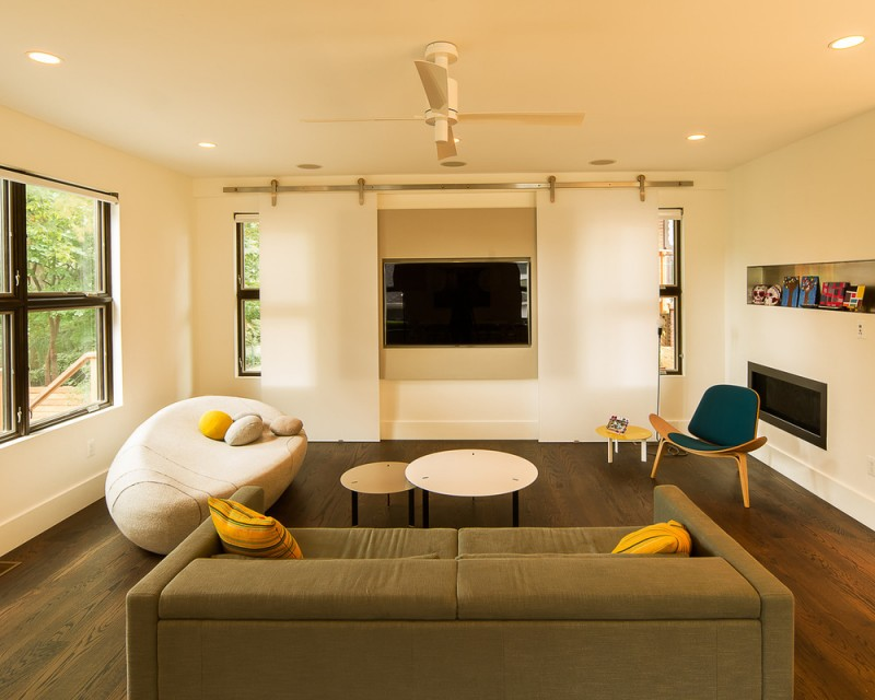 dual purpose barn doors for concealing tv in living room for reducing glare