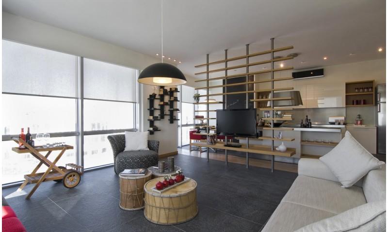dual purpose furniture storage shelf and room divider