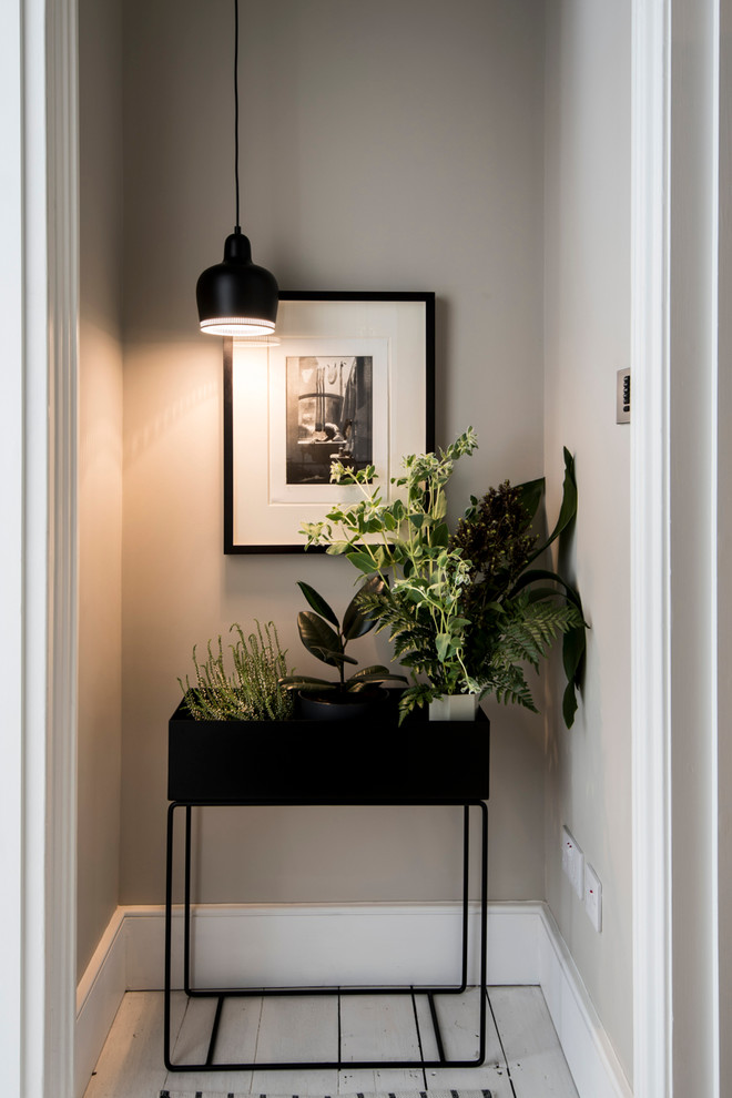 indoor planting idea contemporary entry hall picture lamp plants interior decorative plant