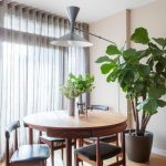 indoor planting idea dining room wood floor pot plants dining chairs table lamp window curtain