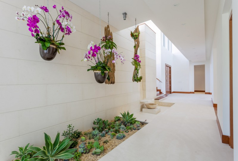 indoor planting idea mediterranean hall hanging pots with plants small garden white ceiling pops of colors