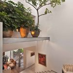 indoor planting idea modern staircase high up shelves pots seating stairs painting interior design