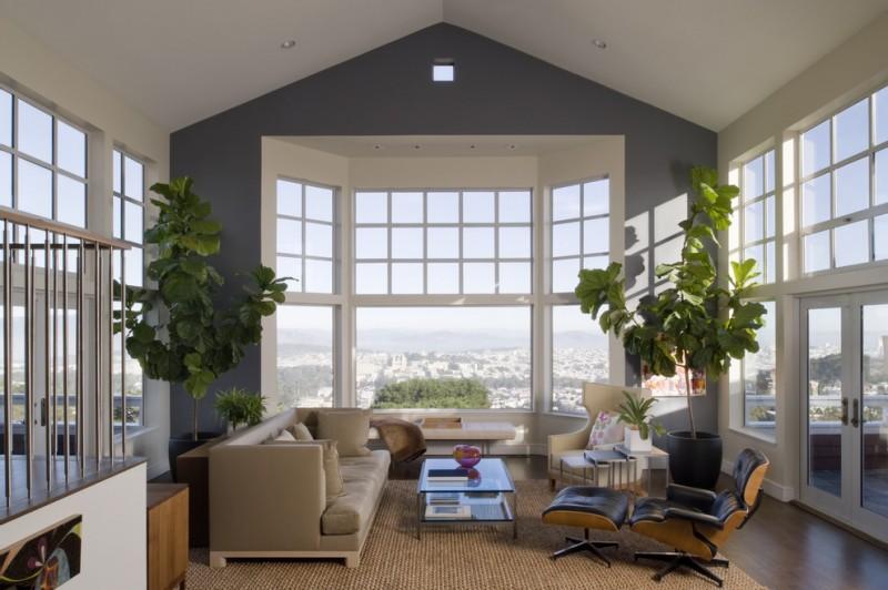 indoor planting idea transitional living room carpet sofa pillows chair windows glass top table doors