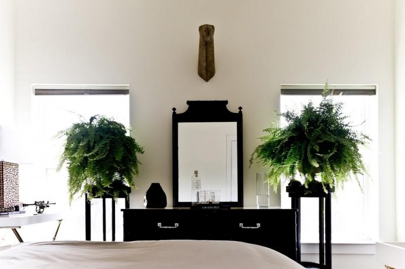 indoor planting idea victorian bedroom mirror storage item boston fern glasses bottle bed plants