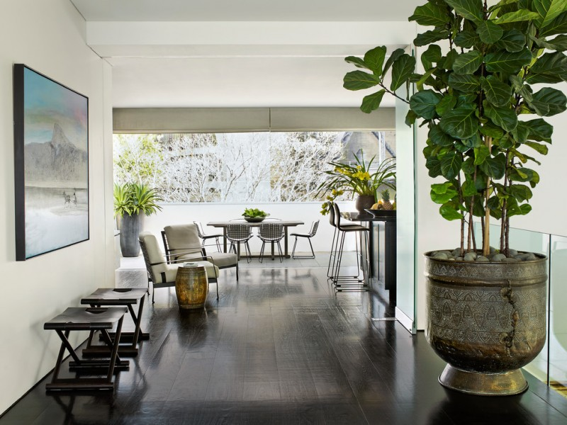 indoor planting idea wood floor tall chairs chair beautiful pot table painting plants fruits contemporary hall