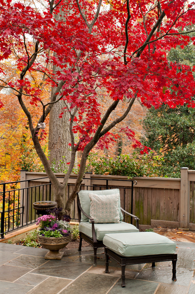 japanese garden exhibition model chair table pillow fence flowers trees red leaves traditional garden
