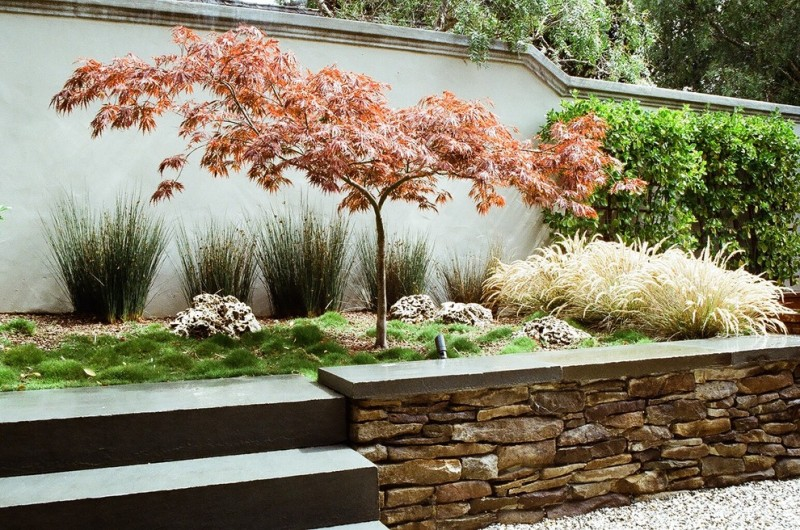 japanese garden exhibition model stones grass plants wall japanese maple asian landscape