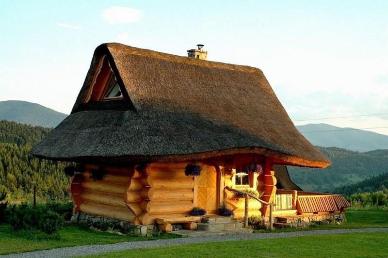 modern simple wooden house grass logs window door unique design