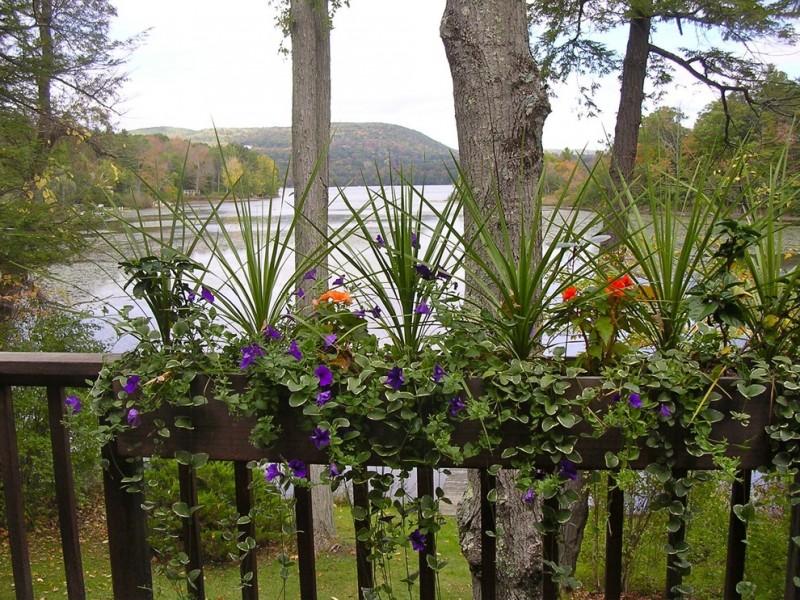 outdoor metal railing with flower design ideas purple flowers orange red landscape trees water plants
