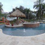 Contemporary Tampa Bay Pool Custom Shape Pool Palm Tree Wood Bridge