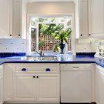 garden windows for kitchen double bowl sink blue countertops flat panel cabinets glass front shelves appliances decorative plants faucet traditional design