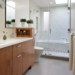 Jacuzzi Tub Shower Combo Decorative Plants Lovely Walls Towel Rack Mirror Toilet Modern Lamp Ceiling Lights Bathtub Contemporary Bathroom