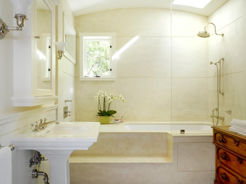 jacuzzi tub shower combo faucets sink lamps mirror small window flowers traditional bathroom