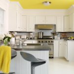 kitchen remodeling nyc shoes sink faucet wall cabinets stove ceiling lamp flowers contemporary room