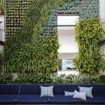 vertical garden plans benches throw pillows concrete pavers fire pit climbing vines door contemporary design