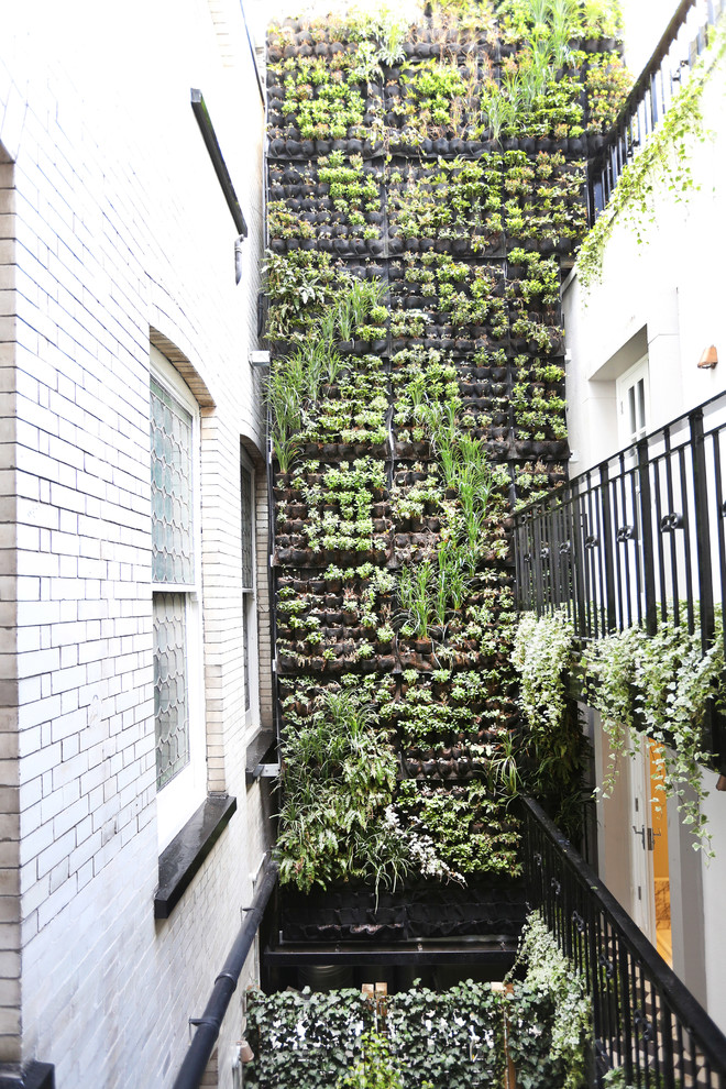 vertical garden plans black railing white brick walls planters windows door contemporary design