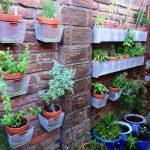 Vertical Garden Plans Brick Walls Plant Pots Decking Traditional Design