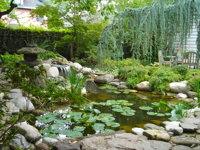 back yard pond chairs flowers plants stones traditional landscape