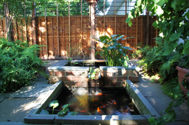 back yard pond fence plants fish outdoor area contemporary landscape