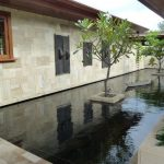 back yard pond plants window walls home exterior tropical landscape
