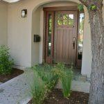 Craftsman Style Front Door Wood Tree Lamp Plants Home Exterior