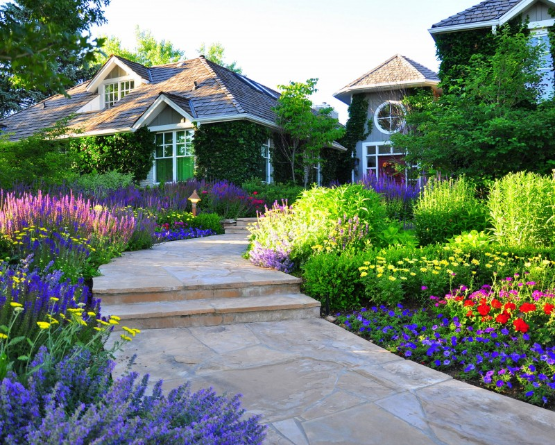 flagstone walkway steps gardern flowers front yard red flowers purple flowers blue flower yellow flower roof house