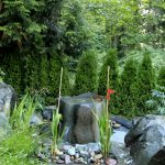 Front Yard Fountains Stone Pavers Peebles Plants Traditional Design