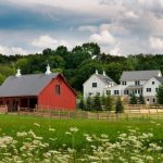 houses that look like barns flowers red walls windows grass trees farmhouse exterior