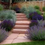 Red Stone Flagstone Purple Flower Pathway Stepping Stone Grass Wooden Fence