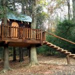 Treehouses For Kids Wood Frame Sliding Railing Green Roof Window Small Window Porch Rustic Design