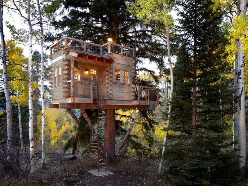 very small house plans trees ladder windows cool lamps rooftop area rustic exterior