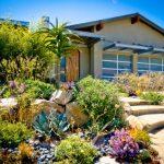 Multi Colored Aloe Vera Front Yard Landscape Design Stone Step Beach Pebble And Decomposed Granite Large Stone Wooden Door Glass Windows