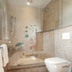 Frameless Glass Shower Doors Beach Style Bathroom Beige Stone Tile Wall Built In Shower Bench Modern Toilet Beach Decorations