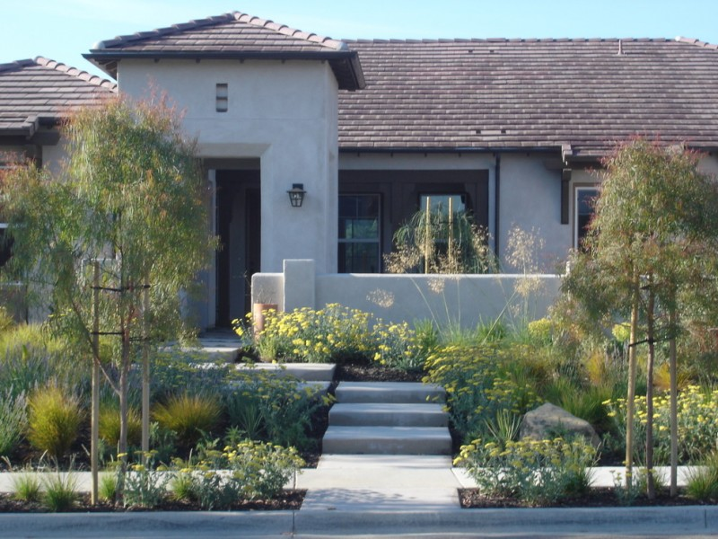 contemporary front yard landscape with concrete stairs green plants porch brass lamp cover dark trim window