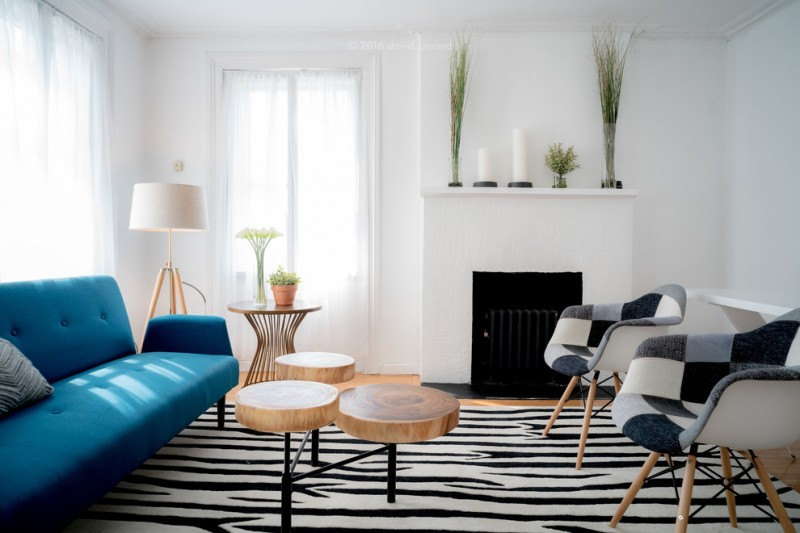 trio of modern tree trunk coffee tables with black iron base blue sifa with deep button details zebra toned area rug modern lounge chairs in bright and dark tones