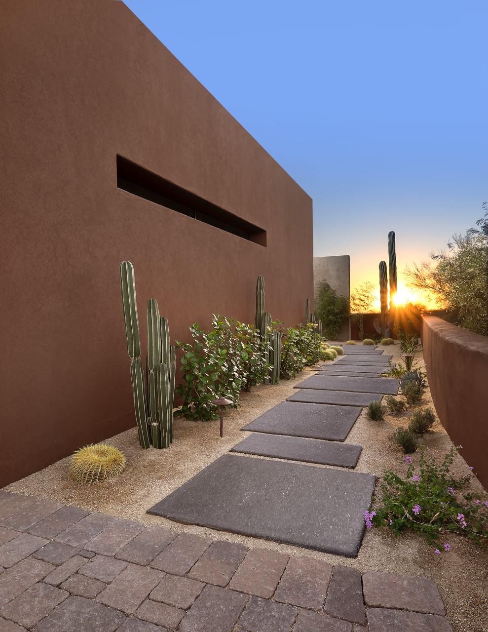 concrete wall cactus stone paving desert landscape contemporary house flowers
