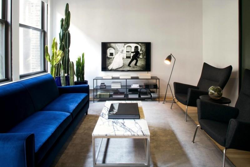 royal blue sofa lounge chair black lucille floor lamp crate & barrel coffee table black rack area rug windows indoor plants