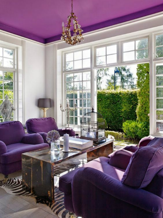 living room with white wall, purple ceiling and sofas, wooden long simple coffee table, gold chandelier, grey floor lamp, zebra skin patterned rug