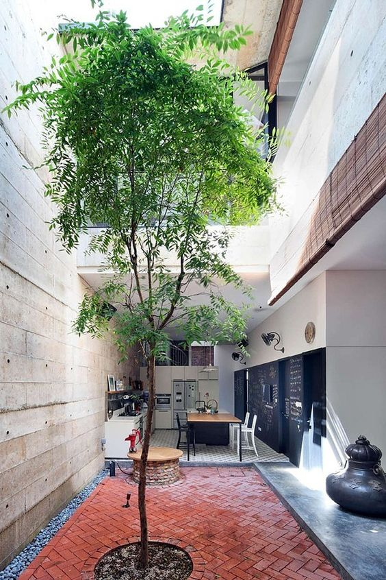 small open space with red conblocks, small round of soiled area with a high tree, near the kitchen