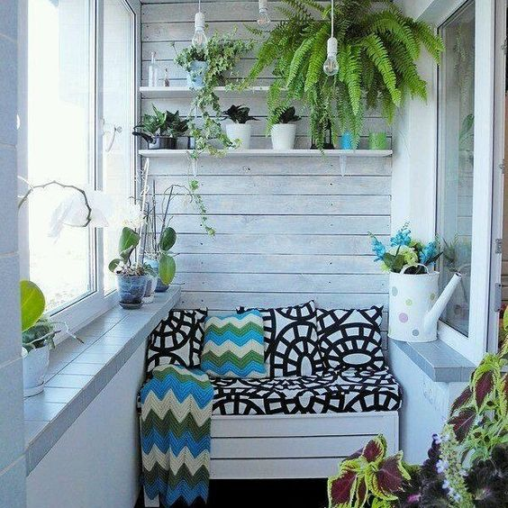 small sunroom with white wooden walls, small white wooden bench, white wooden shelves, plants