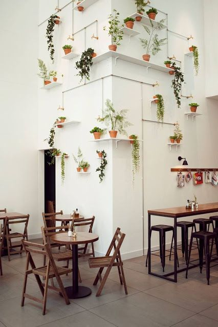 plants pot installments big on the wall