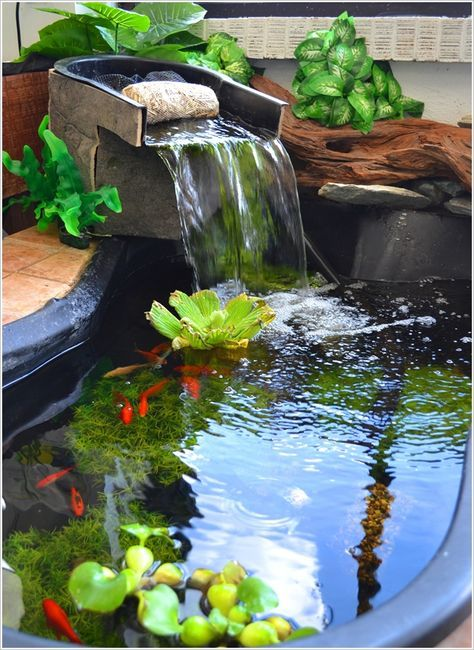 a little pond with black stone base, water flowing on top, algae, water plants, fish